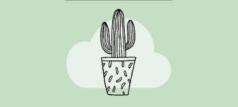 My Sweet Cactus